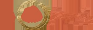 ENP New Logo Rectangle Color 300